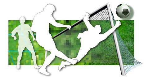 bestes sportwetten portal